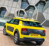 C4 Cactus Goes On Sale In The UK