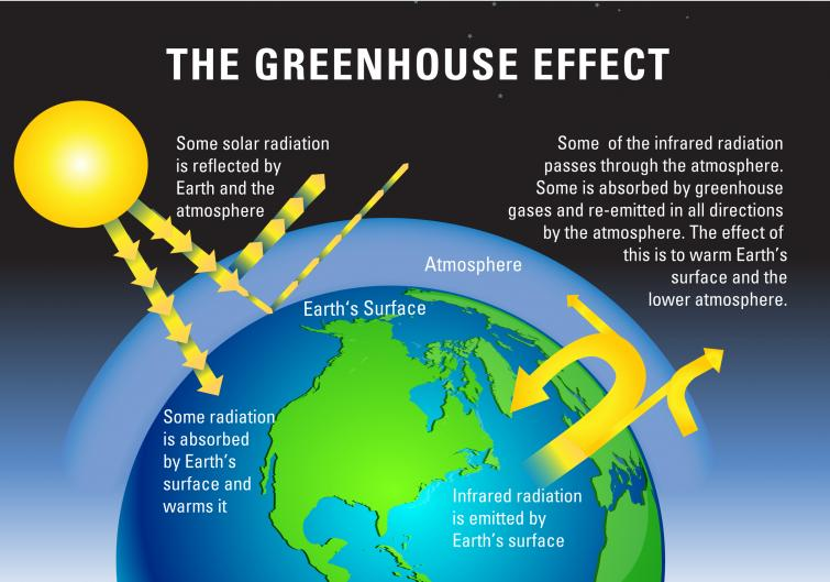 car greenhouse effect
